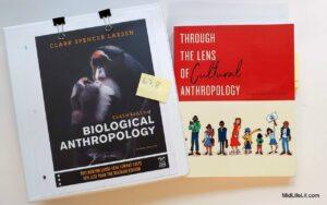 Anthropology textbooks